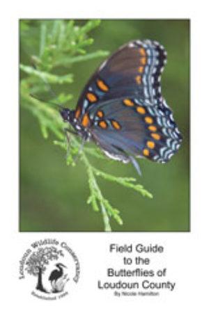Field Guide to the Butterflies of Loudoun County