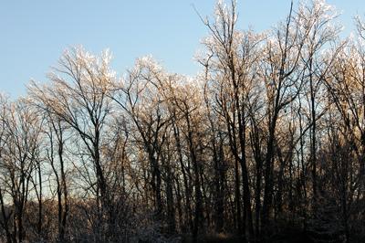 winter-ice-10-12_16_2005