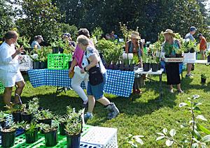 Ida Lee Park - Master Gardeners' Garden - Loudoun Wildlife
