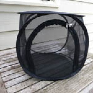 Small Black Rearing Cage