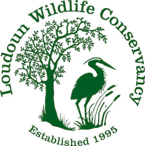 Loudoun Wildlife Conservancy logo