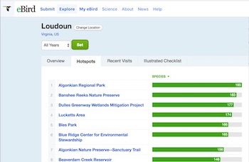 eBird region screenshot