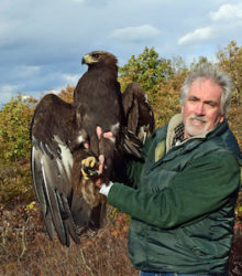 Liam McGranahan with Golden Eagle