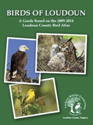 Birds of Loudoun book cover