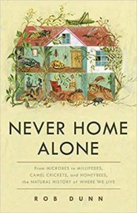 """never home alone"" book cover art"