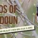 Birds of Loudoun Library Programs