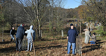 Volunteers at JK Black Oak Wildlife Sanctuary