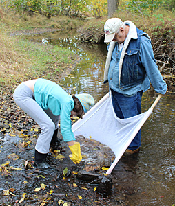Collecting specimens from a stream