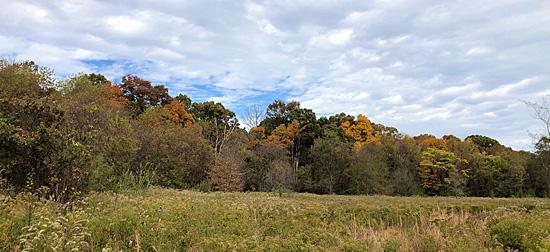 JK Black Oak Wildlife Sanctuary Oct. 2019