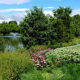 Virtual Ashburn Village HOA Native Plant Landscape Tour