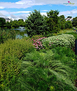Tippecanoe Lake native gardens