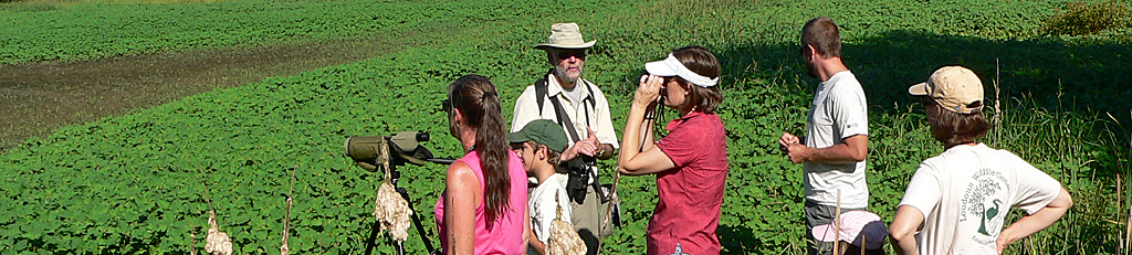 Loudoun Wildlife members at Dulles Wetlands