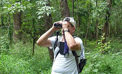Birding at Black Oak
