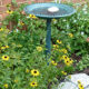 Canceled: Tips for a Lazy Gardener (Virtual)