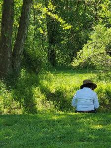 Nature Journaling at Morven Park