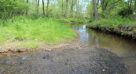 North Fork stream monitorin