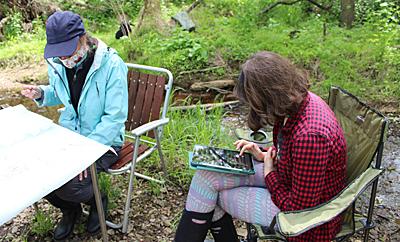 Volunteers using Stream Scorer app