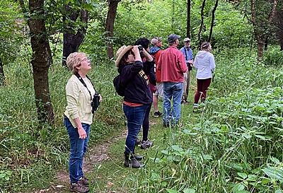 Group of birders.