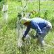 Work Day at JK Black Oak Wildlife Sanctuary