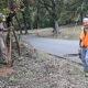 Work Day at JK Black Oak: Plant Rescue
