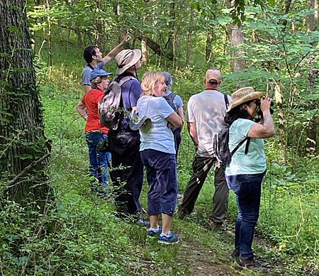 July 2021 Bird Walk at Banshee Reeks