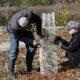 Willowsford Habitat Restoration Planting