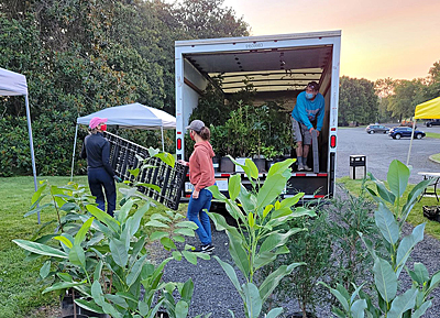Setting up Nature by Design nursery