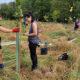 Volunteers Expand Broad Run Riparian Buffer